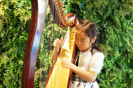 アサフ音楽院ハープ教室